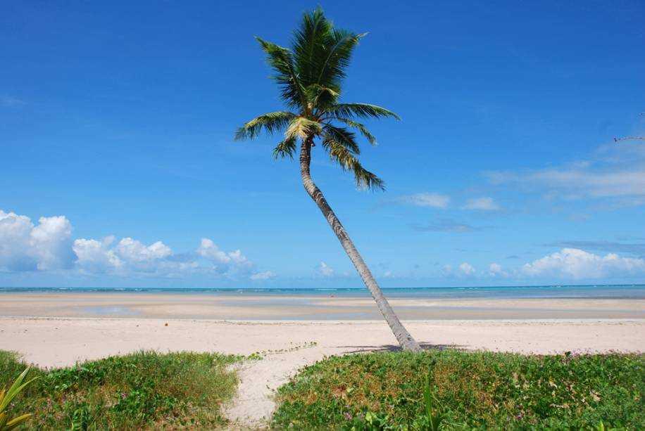 Foto tirada das dunas de são miguel dos milagres