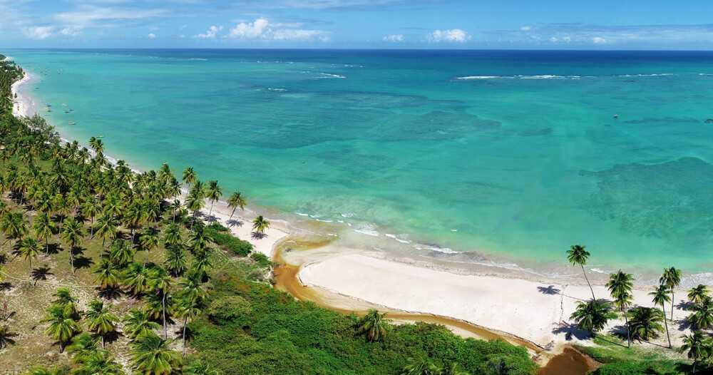 São Miguel dos Milagres foto aerea da praia