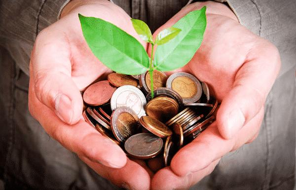 Investir com mil reais - Vamos dividir esse dinheiro